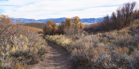 Dutch Hollow Trail System