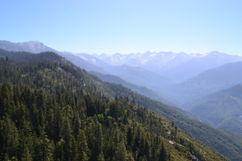 sequoia-and-kings-canyon-np-206