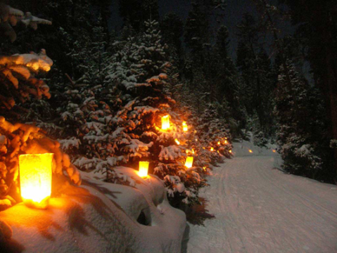 christmas-luminaria-tour-enchanted-forest-530