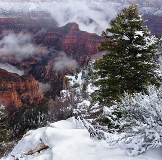 north-rim-j-pope