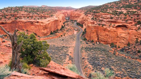5-Burr-Trail-Road-2A