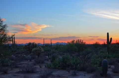 Dipper Preserve Sunset Main