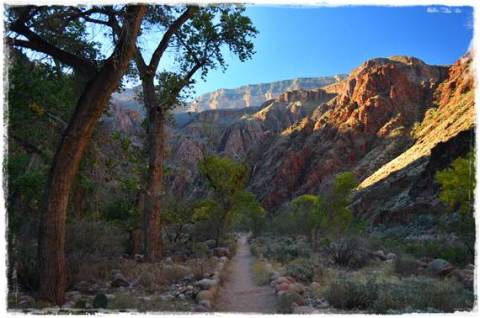 North Kaibab Trail at Phantom Ranch