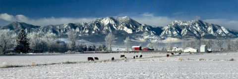 Boulder, Colorado - Winter Farm Pano