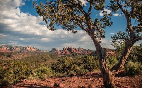 Sedona, Arizona Landscape