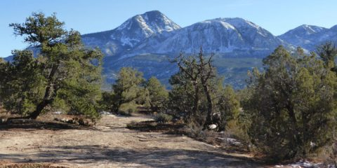 Canyons-Anciens-Sand-Canyon-Trail-Sleeping-Ute-Mountain-1280x640-650x325