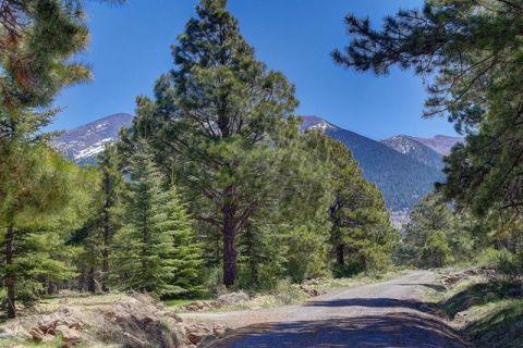 Pine Mountain Rd, Flagstaff