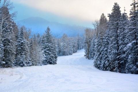 Snow Bowl run