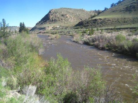 arkansas-river-lake-county-colorado