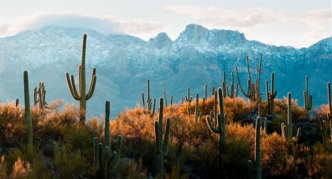 Table Mountain, Santa Catalina Mountains, Tucson, AZ