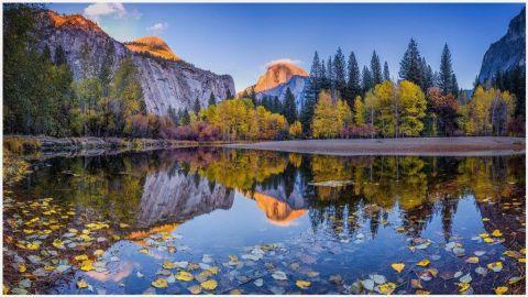 Lake Shasta Trinity National Forest