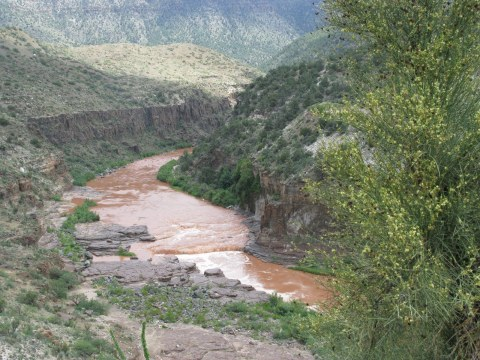 salt-river-canyon-near-pinetop