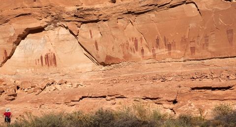 Huge Horseshoe Canyon's Grand Gallery Canyonlands NP Utah