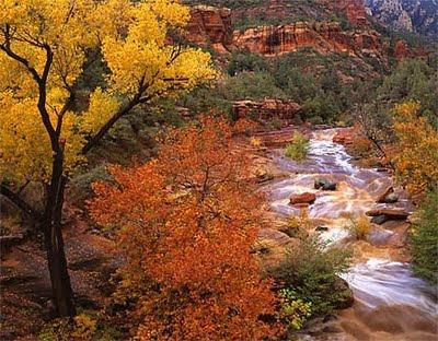 slide-rock-in-oak-creek-canyon